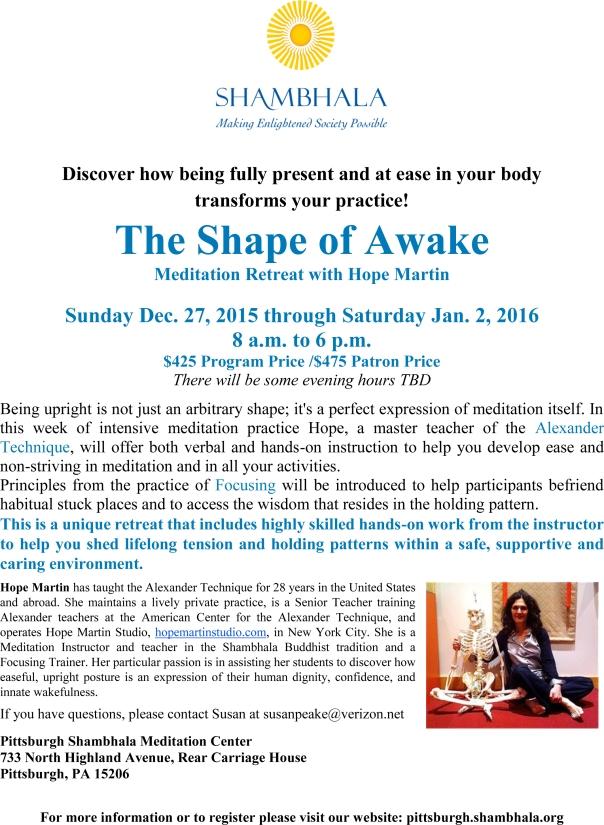 The Shape of Awake flyer