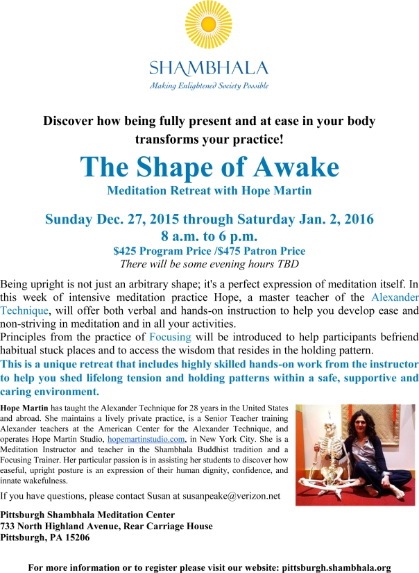 The Shape of Awake flyer