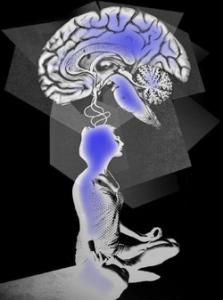 FallWinter11-Meditation